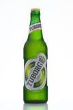MINSK, BIÉLORUSSIE 23 AOÛT 2016 Bière de bouteille en verre de Tuborg sur le fond vert Image libre de droits