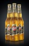 MINSK BIAŁORUŚ, CZERWIEC, - 29, 2017: Redakcyjna fotografia butelki Miller szkicu Prawdziwy piwo z kroplami odizolowywać na czern Fotografia Stock