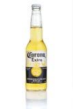 MINSK BIAŁORUŚ, LIPIEC, - 10, 2017: Redakcyjna fotografia butelka korony słonecznej Ekstra piwo odizolowywający na bielu, jeden n Zdjęcie Royalty Free
