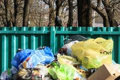 minsk _ Mars 9, 2019 utomhus behållare med mycket avfall Det finns fåglar inte sorterat arkivfoto