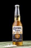 MINSK VITRYSSLAND - JULI 10, 2017: Redaktörs- foto av flaskan av Corona Extra öl på wood bakgrund, en av överkanten Royaltyfria Bilder