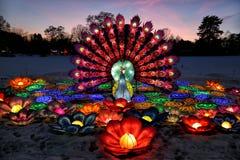 Minsk, Vitryssland Ljus show av kinesiska lyktor i en botanisk trädgård fotografering för bildbyråer