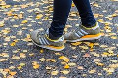Minsk, Weißrussland - 14. Oktober 2017: Adidas-Schuhe auf Beinen auf dem nassen Asphalt Stockbild