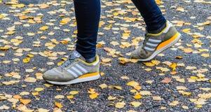 Minsk, Weißrussland - 14. Oktober 2017: Adidas-Schuhe auf Beinen auf dem nassen Asphalt Lizenzfreie Stockfotos
