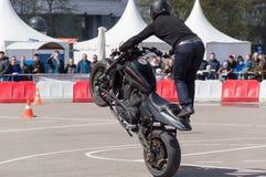 MINSK, WEISSRUSSLAND - 24. APRIL 2016 SCHWEIN Harley Owners Group-Öffnung, die Jahreszeitshow fährt Mannbremsungsreiten mit schwa Stockfotos