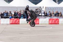 MINSK, WEISSRUSSLAND - 24. APRIL 2016 SCHWEIN Harley Owners Group-Öffnung, die Jahreszeitshow fährt Mannbremsungsreiten mit schwa Lizenzfreie Stockbilder