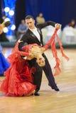 MINSK-WIT-RUSLAND, 24 NOVEMBER: Het niet geïdentificeerde paar van de Dans presteert Stock Foto