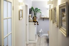 MINSK, WIT-RUSLAND - Januari, 2019: de binnenlandse vlakke flats van de luxuregang met decoratie stock foto's