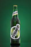 MINSK, 23 WITRUSSISCH-AUGUSTUS, 2016 De flessenbier van het Tuborgglas op groene achtergrond Stock Afbeelding