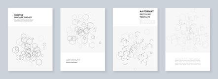 Minsta broschyrmallar med sexhörningar och linjer på vit Sexhörning Infographic Begrepp för Digital teknologi Royaltyfria Foton