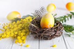Minsta påsksammansättning Gult dekorativt fegt ägg i de redemimosablommorna och fjädrarna royaltyfri fotografi