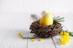 Minsta påsksammansättning Gult dekorativt fegt ägg i de redemimosablommorna och fjädrarna fotografering för bildbyråer
