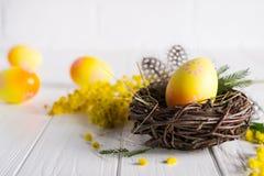 Minsta påsksammansättning Gult dekorativt fegt ägg i de redemimosablommorna och fjädrarna arkivfoto