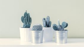 Minsta stilleben Moderiktig stil för minimalismpopkonst och färgkaktusbakgrund Samtida konst royaltyfri foto