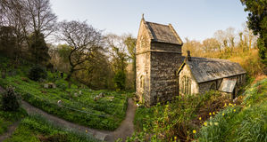 Minster church in Valency woods near Boscastle. Ancient norman parish church in woodland in Minster, Boscastle, Cornwall, England, UK Stock Images