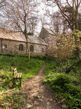 Minster church in Valency woods near Boscastle. Ancient norman parish church in woodland in Minster, Boscastle, Cornwall, England, UK Royalty Free Stock Photo