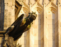 Minster Gargoyle Royalty Free Stock Photo