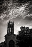 Minster in York, Yorkshire, England  the UK Royalty Free Stock Photo