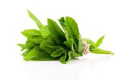 Mint листья Стоковое Изображение