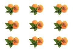 Mint, albicocca tagliata a metà su bianco Fotografie Stock