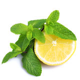 Mint And Lemon Stock Photography
