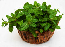 Mint in a basket. On a old wooden background Royalty Free Stock Photo