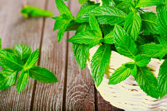 Mint in a basket. On a wooden background Stock Image
