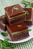 Mint brownies. Mint and dark chocolate brownies Stock Photos
