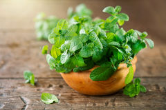 Mint. Bunch of fresh green organic mint leaf on wooden table. Closeup stock photo