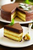 Mint Cake Opera Royalty Free Stock Photo