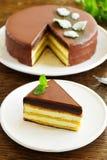 Mint Cake Opera Royalty Free Stock Photos