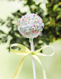 Mint cake pops decorated with sprinkles Stock Images