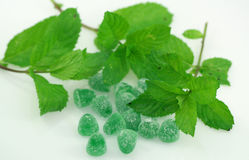 Mint and Candies Royalty Free Stock Photos