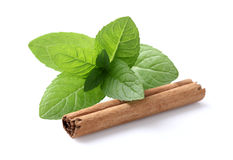 Mint with cannelle Royalty Free Stock Photo