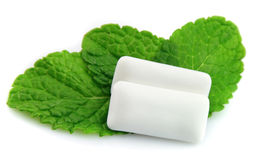 Mint with  chewing gum Stock Photos