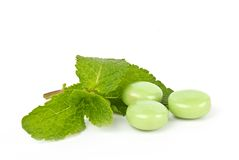 Mint and chewing gum Stock Photos