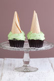 Mint choc chip cupcakes Royalty Free Stock Image