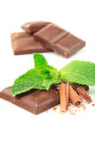 Mint and chocolate Stock Photography