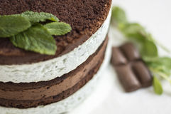 Mint-chocolate cake. Sweet mint and chocolate cake Stock Photography