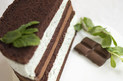 Mint-chocolate cake Royalty Free Stock Photo