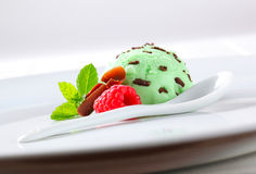 Mint chocolate chip ice cream Royalty Free Stock Photos