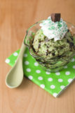 Mint chocolate chip ice cream with whipped cream Royalty Free Stock Photography