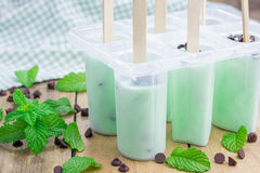 Mint and chocolate chips yogurt popsicles in molds Stock Images