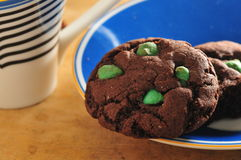 Mint Chocolate cookie Stock Photo