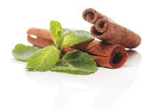 Mint and cinnamon Stock Photography