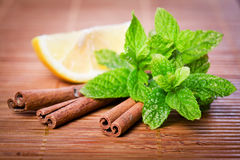 Mint And Cinnamon Royalty Free Stock Photo