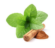 Mint with cinnamon Stock Photography