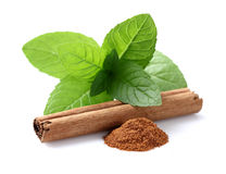 Mint with cinnamon. Mint leaves with cinnamon stick royalty free stock photography
