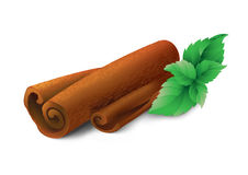 Mint and cinnamon. Photo realistic illustration of cinnamon sticks and mint leafs on white background Royalty Free Stock Photos