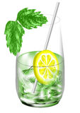 Mint cocktail Stock Images